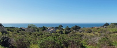 Sea Ranch, CA Our view